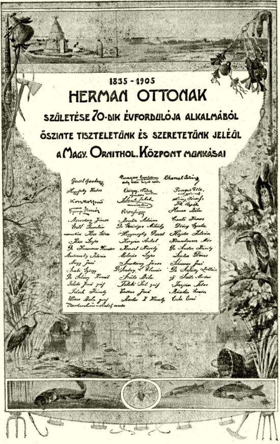LAMBRECHT KÁLMÁN: HERMAN OTTÓ