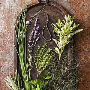 These 13 Herbs Will Thrive In Container Gardens 400 x 300