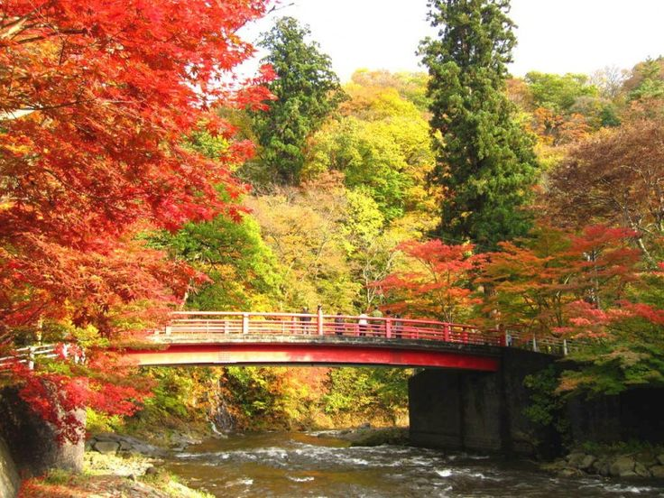 Let's Go Visit Tohoku in the Autumn! The 10 Best Autumn Leaf Viewing Spots – Aomori & Yamagata | Taiken Japan