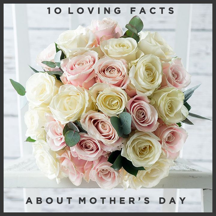 http://www.appleyardflowers.com/blog/10-loving-facts-about-mothers-day/ Learn about the history of Mother's day and why we celebrate it. Also some interesting facts about Mums around the world!
