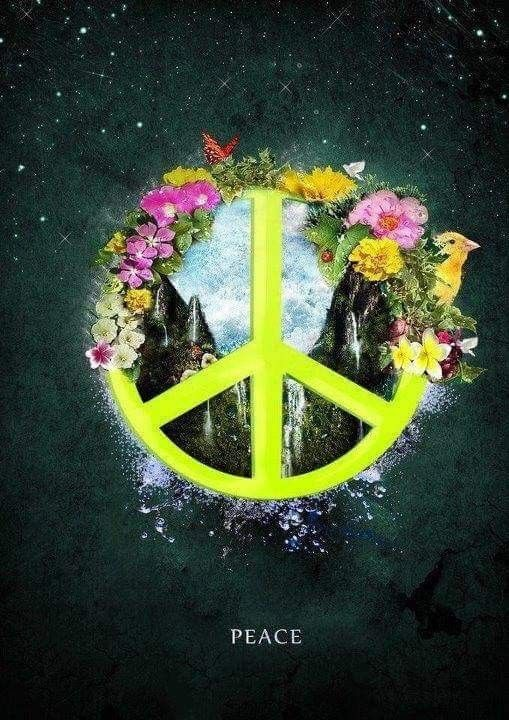 72 Best Peace In The World Images On Pinterest Hippie Chick