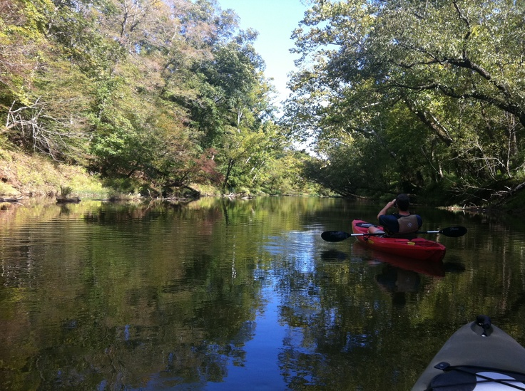 Neuse river float raleigh nc kayaking fun pinterest for Fishing in raleigh nc