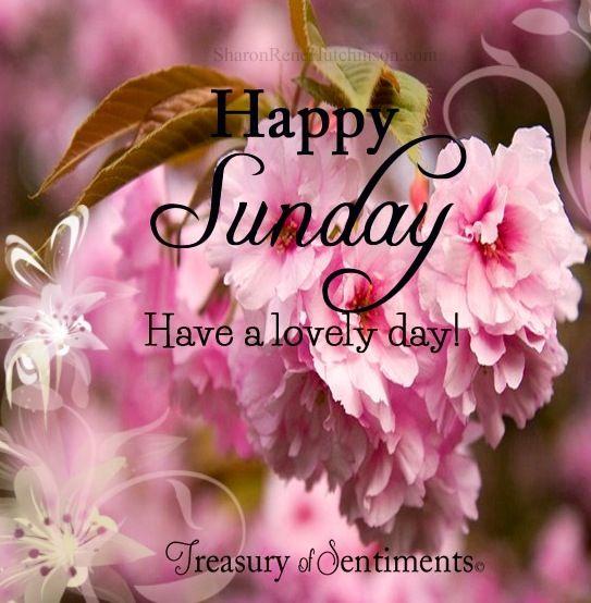 Happy Sunday via www.Facebook.com/TreasuryofSentiments or www.SharonReneHutchinson.com