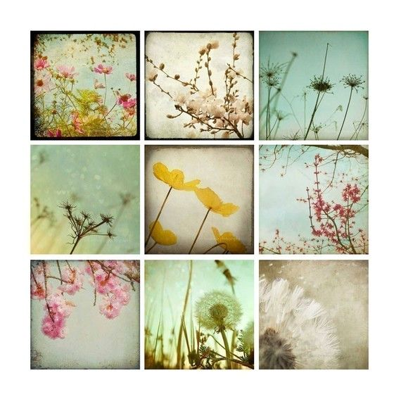 Nature Photography Set - flowers & dandelions - pastel - surreal - baby nursery - dorm decor - loft decor - 8x8 photo set