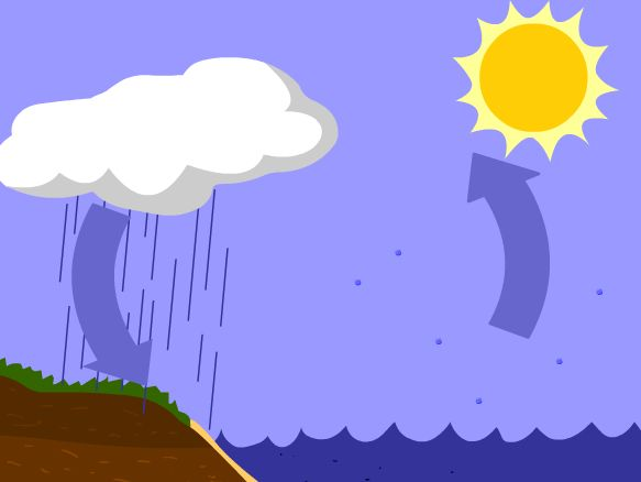 Water Cycle Lesson Plans And Ideas