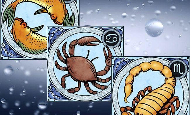 I segni dello Zodiaco sono dodici e tre di questi costituiscono il trigono d'acqua: Cancro, Scorpione e Pesci