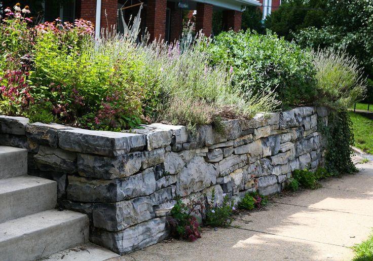 The Natural Garden is an ecological design and landscaping company located in the Shenandoah Valley with over 20 years experience in traditional hardscapes.  We specialize in native plants of the Shenandoah Valley and surrounding mountains.