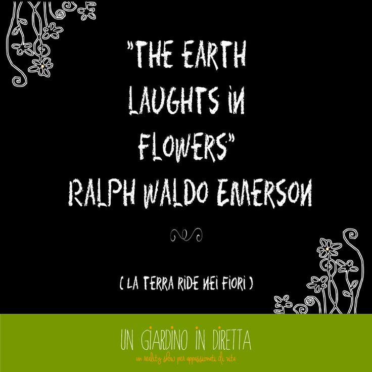 bombe e fiori per la to do list della settimana #giardino #giardinoindiretta #todolist #citazioni