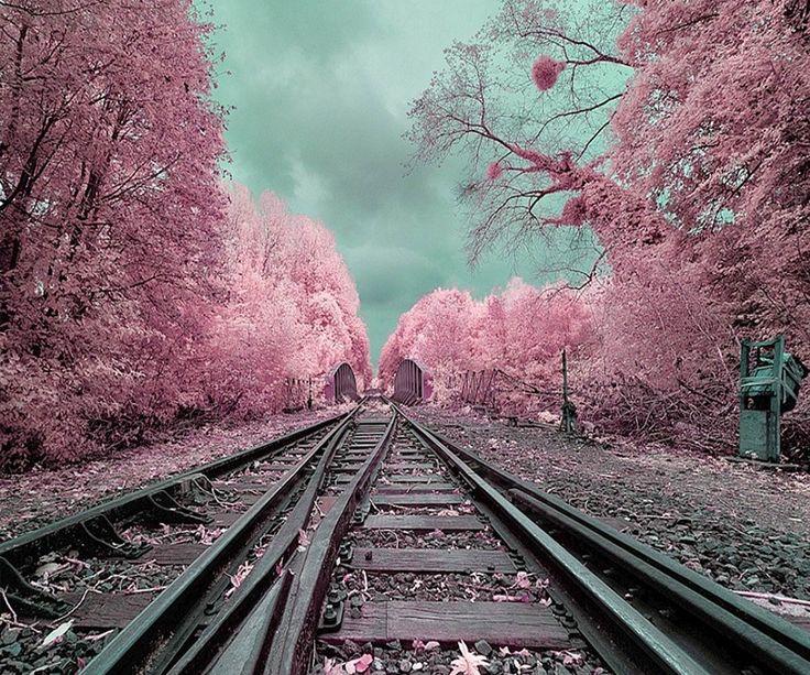 #traintrack #lightpink