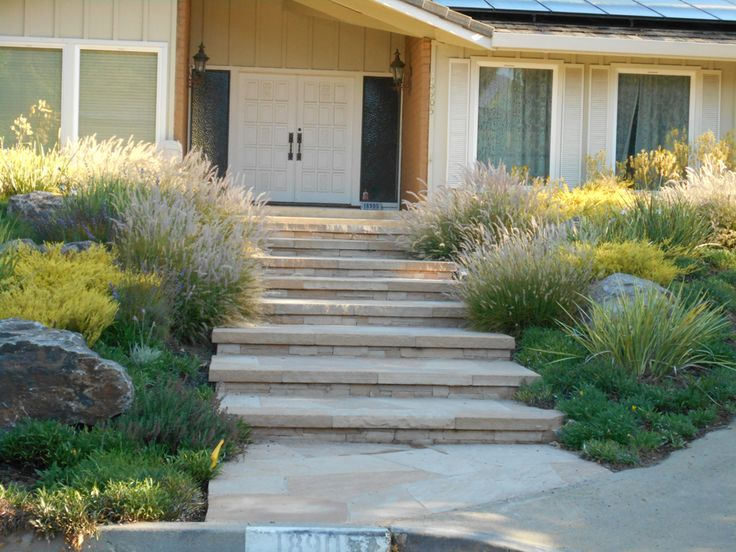california native garden ideas