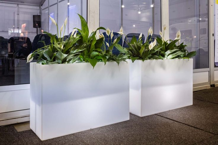 Illuminated Planter Boxes Kado by Pedrali  Used here by Mroeton Hire Australia