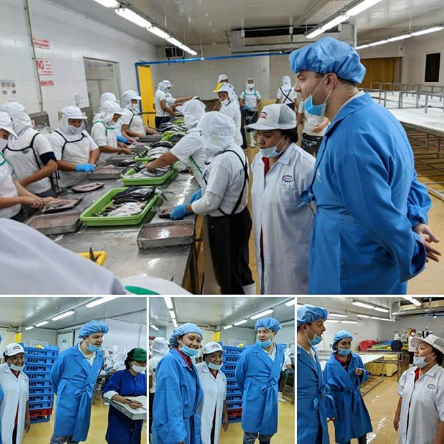 Thanks to that lovely lady in a white lab coat. I learned a lot about the tuna industry in General Santos City. #tunacapitalofthephilippines #generalsantoscity #tunaprocessingcompany #learnsomethingneweveryday #tuna #mikedershowitz #mikedershtravels