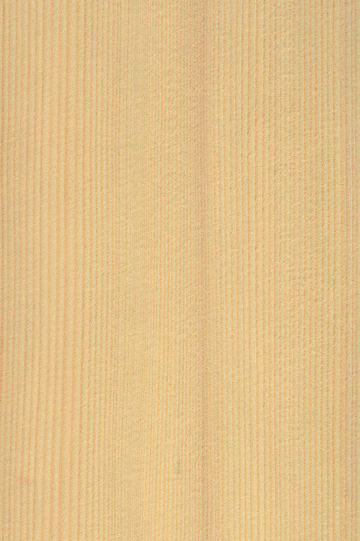 Tanne | Furnier: Holzart, Weißtanne, Blatt, hell, Nadelholz #Holzarten #Furniere #Holz