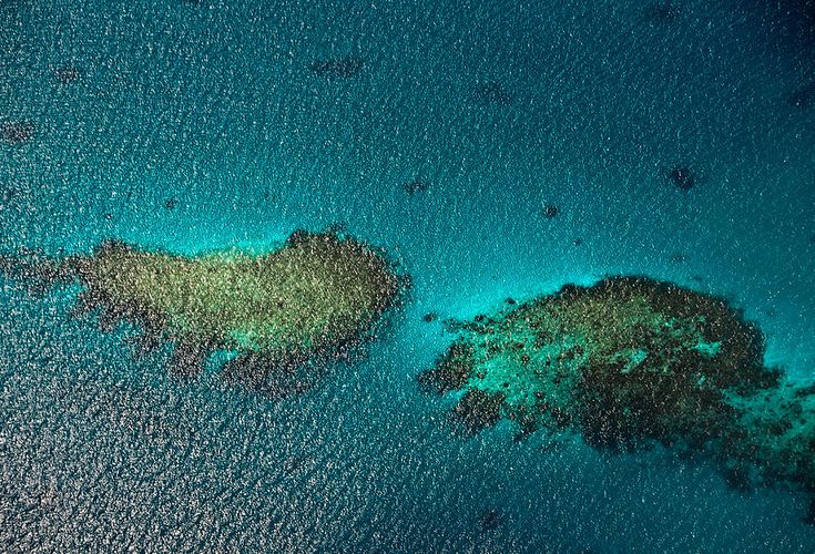 Coral Reefs. Aerial View. Maldives by Jenny Rainbow