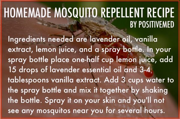 Homemade Mosquito Repellent Recipe, it's natural, less-expensive and it doesn't have any  side effects.