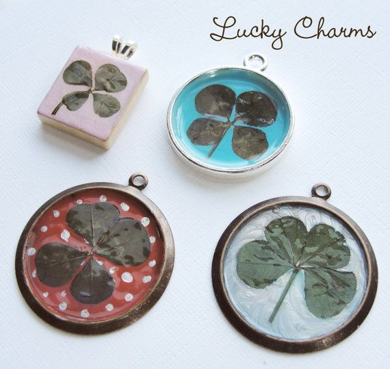 Is Lucky Charms Good Fir Dogs