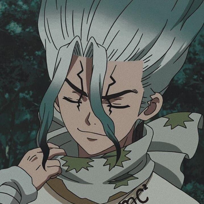 Pin by Orla Figs on Senku | Aesthetic anime, Anime, Stone