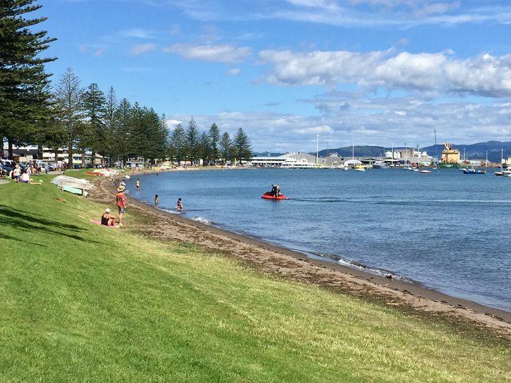 Bill ✔️ Pilot Bay, Mount Maunganui, New Zealand. The start of Summer - Labour Weekend, 2016.    Bill Gibson-Patmore.  (iPhone image, curation & caption: @BillGP). Bill ✔️.