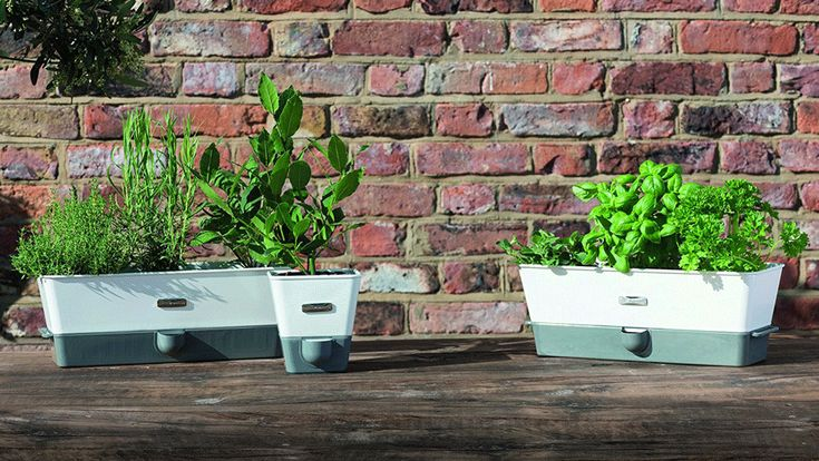 No Green Thumb This Self Watering Indoor Herb Planter Was 400 x 300