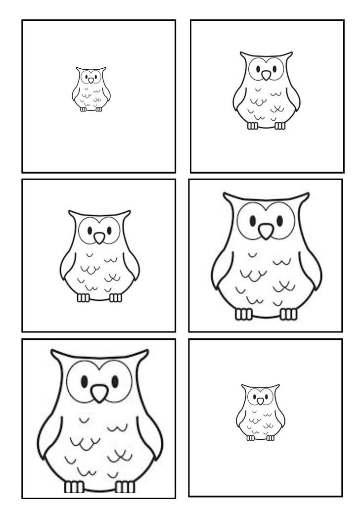 Owl sequencing - small to big or big to small!