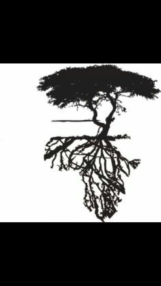 11 best tattoo images on pinterest tattoo ideas silhouettes and rh pinterest com african acacia tree tattoo african tree tattoo meaning