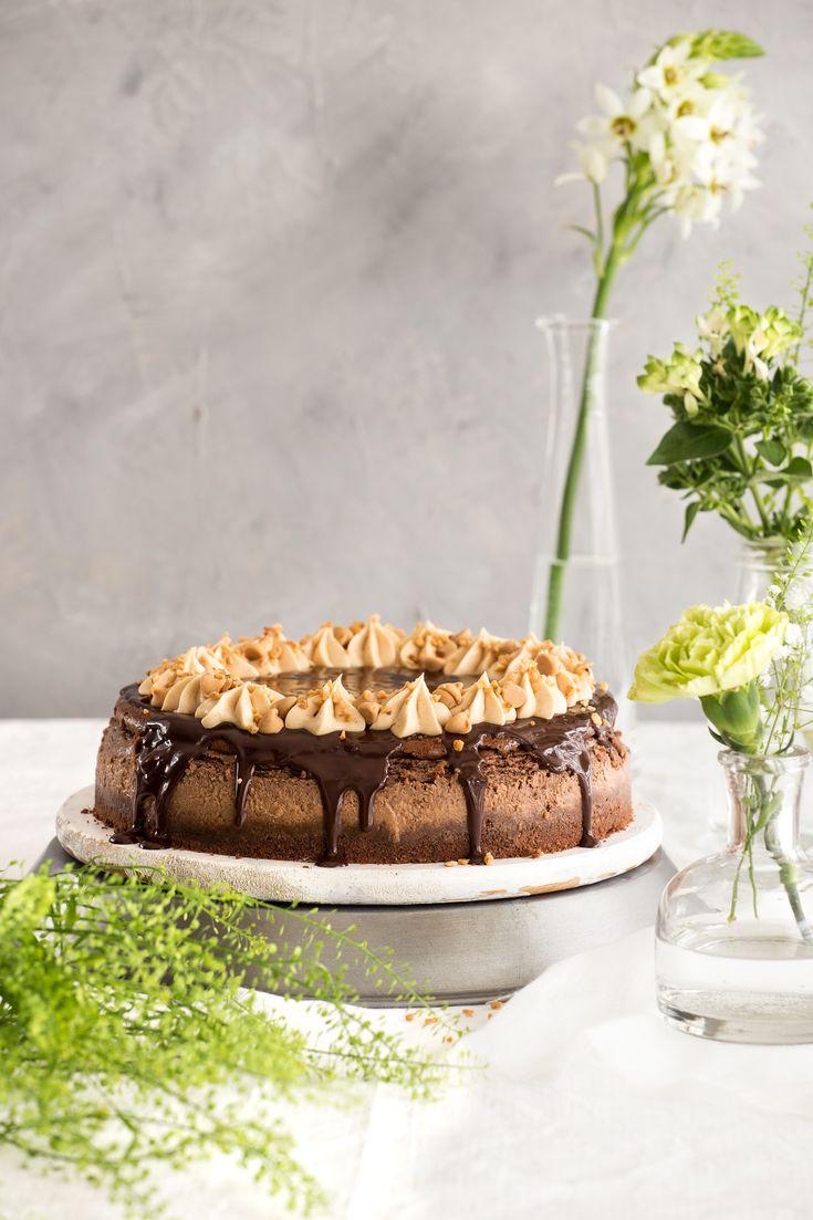 Schokolade und Erdnussbutter Käsekuchen
