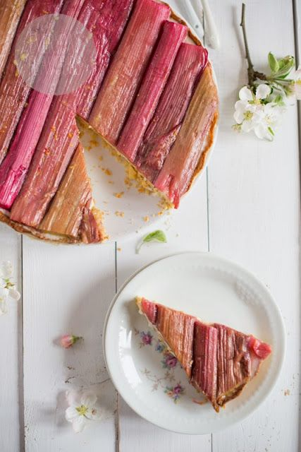 panna cotta and rhubarb tart