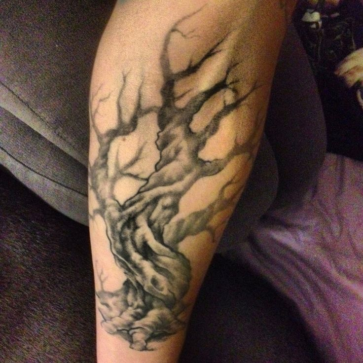 Olive tree tattoo, inspired from my trip to Israel hen I was 16.