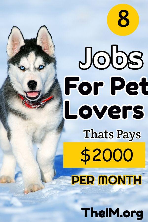 8 Jobs For Pet Lovers That Pay 50 Hour In 2020 Make Money Fast Online Easy Money Online Earn Money From Surveys