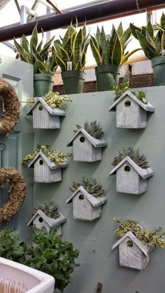 A Garden for the Birds