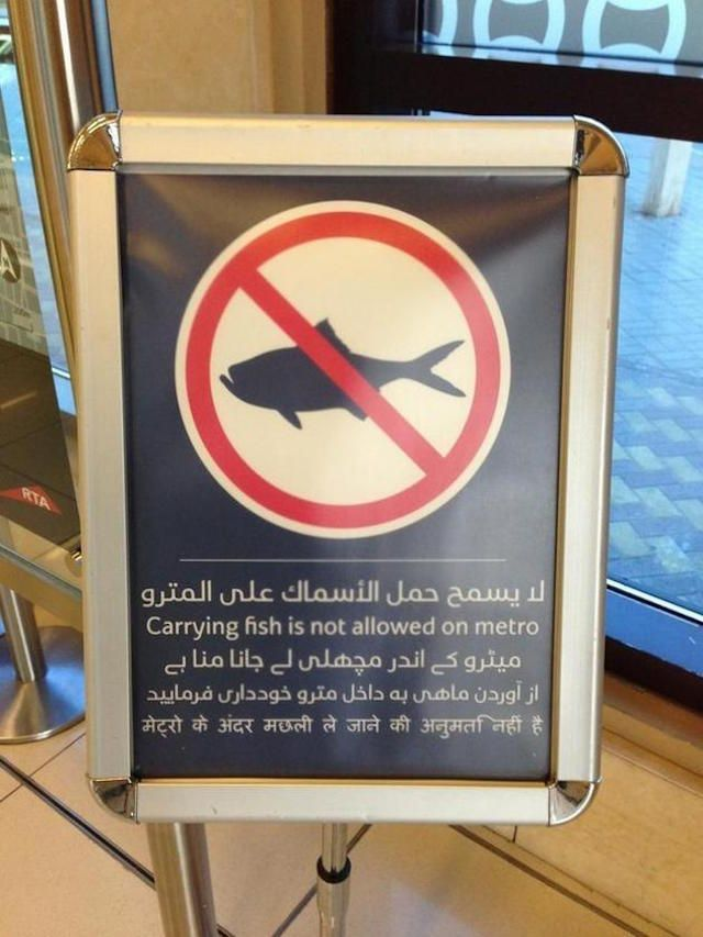 It's Forbidden To Carry Fishes On The Subway  30 Crazy & Hilarious Things That You'll Only See In Dubai • Page 4 of 6 • BoredBug