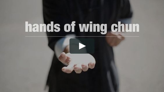 The expressive and simplistic movement of wing chun kung fu.