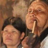 Aldeia em Peruíbe sofre com ação de mineradoras e Ibama ignora indígenas by redebrasilatual on SoundCloud
