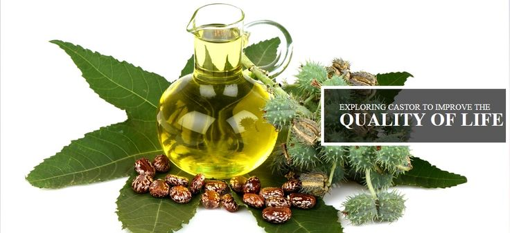 nice Industrial Castor Oil Suppliers & Manufacturers in India http://dailyblogs.com.au/services/castordeoiled/industrial-castor-oil-suppliers-manufacturers-india