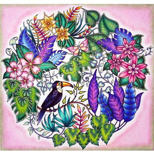 1000 Images About Johanna Basford Magical Jungle On