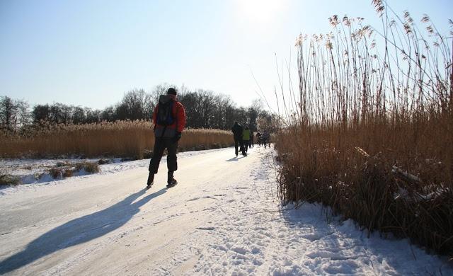 'Rond de Wiedentocht' - 7 februari 2012: Tussen de rietkragen door (Belterwijde)    schaatsen, natuurijs
