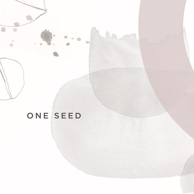 SNEAK PEAK // A very special sneak peak at the lovely new branding and packaging we have been developing with the equally lovely @oneseedperfumes ☺️