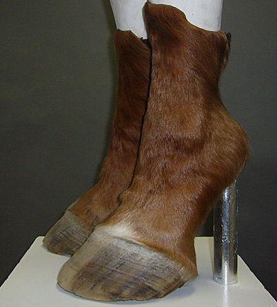 elarogers: Horse Shoes by Iris Schieferstein.