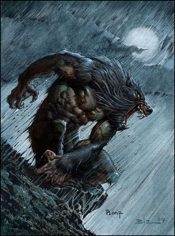 """The Irish werewolf is different from the Teutonic or European werewolf, as it is really not a """"monster"""" at all."""