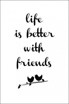 """""""Life is better with friends"""" with two birds on a branch graphic ....................  #DIY #crafts #typography #graphics"""