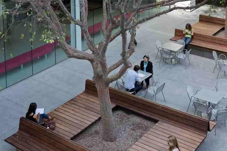 bench-around-tree-hammer-museum-courtyard-by-michael-maltzen