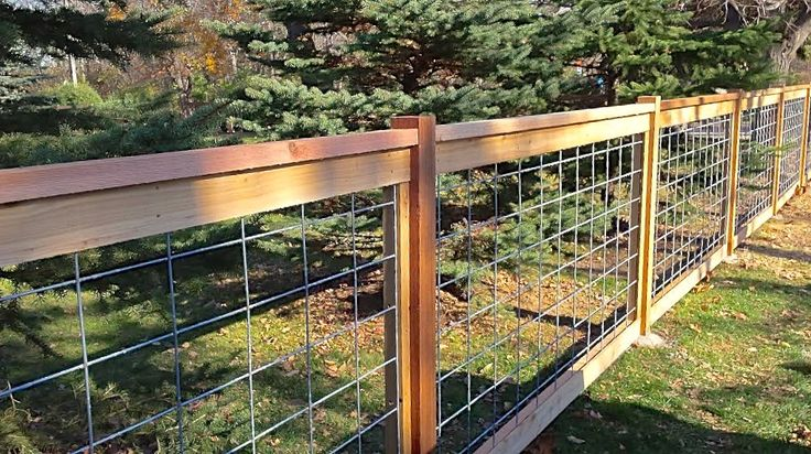 """Image result for hogwire 4""""   Wire fence panels, Hog wire ..."""