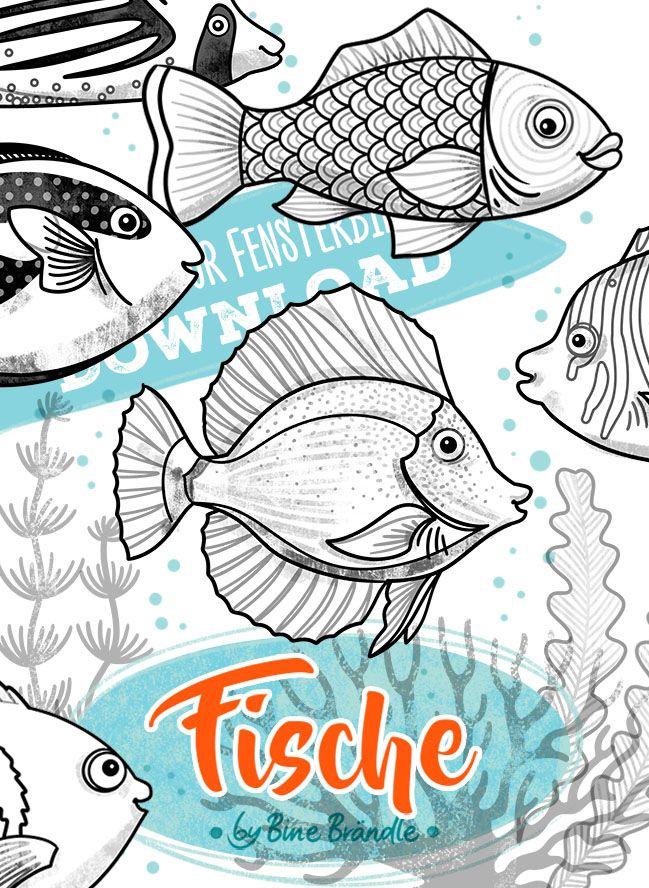 Fische Bines Shop Fisch Malen Fische Zeichnen Anleitung Mandala Zum Ausdrucken