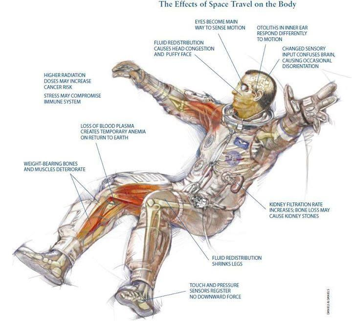 importance of anatomy 2018-08-09 pages in category mid-importance anatomy articles the following 200 pages are in this category, out of approximately 2,222 total this list may not reflect recent changes  (previous page).