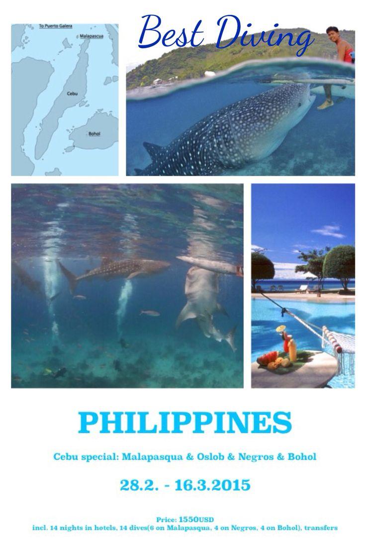 #bestdiving@yahoo.com #Philippines