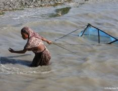 Impossibly Cheap: Abuse and Injustice in Bangladesh's Shrimp Industry This film reveals evidence of human rights and labour abuses taking place at every stage of the lucrative Bangladeshi shrimp industry.