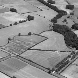 Fields to the east of the village, Cottingham, 1952 | Britain from Above