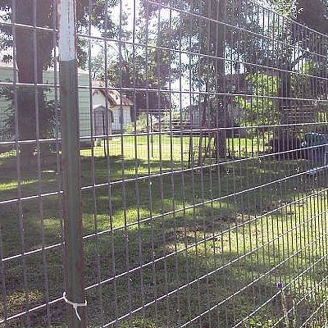 How To Build A Great Escape Proof Dog Fence Diy Dog Fence Dog Proof Fence Diy Fence