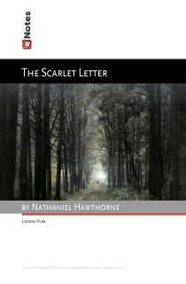 Someone who has read the scarlet letter..and write essays pretty well...i need you to read something pleasee?