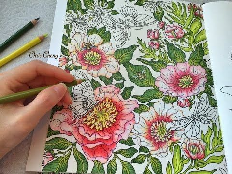 """The Peony"" - Coloring with Colored Pencils (Part 2) - YouTube"